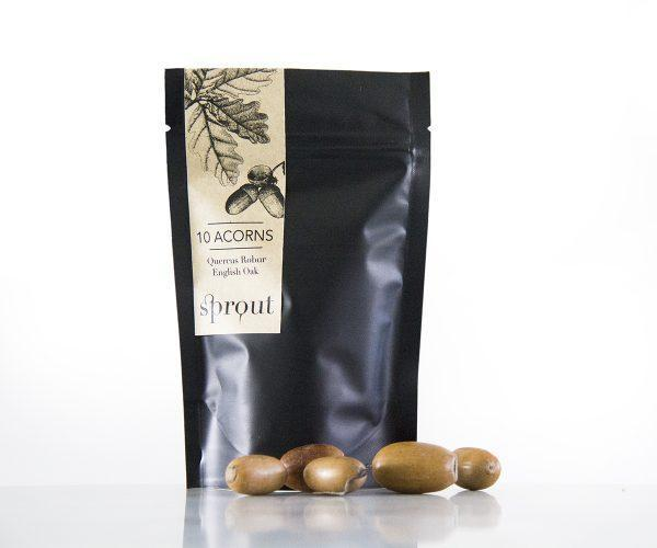 sprout package acorns