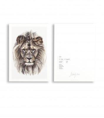malou kalay sterrenbeeldkaart leeuw