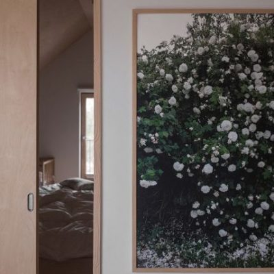 fine little day vita rosor poster white roses 70 x 100 cm