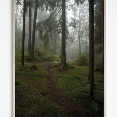 poster glänta glanta forest 50 x 70 cm fine little day tykky wall art