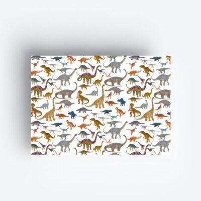 inpakpapier gift wrapping geschenkpapier dinos jungwiealt tykky stationary products verjaardag birthday geburtstag jungs boys jongens