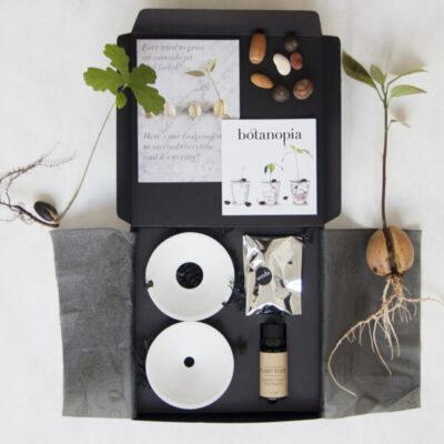 cadeauset deluxe gift set botanopia sprout kweekschaaltje tykky