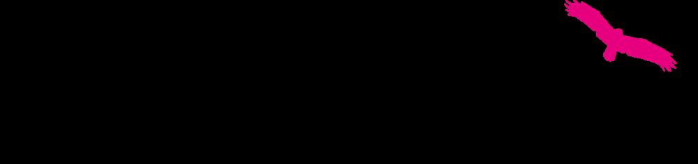 logo pink stories